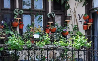 Stadt für alle: Milieuschutz und tatsächliche Mietbelastung als Grundlage für städtische Wohnpolitik!