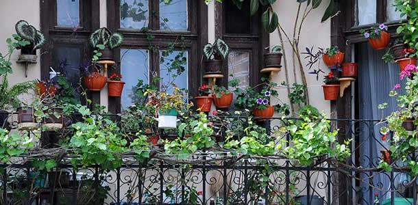 30 % aller Wohnungen im Eigentum der Stadt