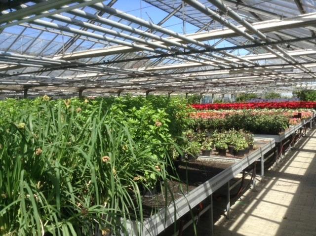 Bio-Stadtgärtnerei erhielt Zertifizierung der Europäischen Union