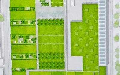 Einen grünen Park auf dem Dach…
